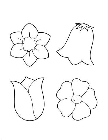 Шаблоны цветов колокольчик, нарцис, тюльпан к весенним поделкам